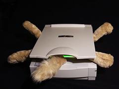 cat_scan_gone_wrong.jpg